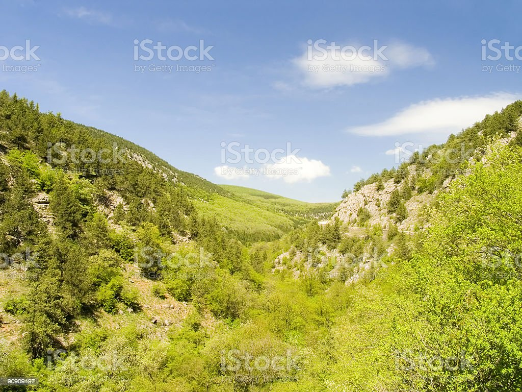 Canyon with the mountain river royalty-free stock photo