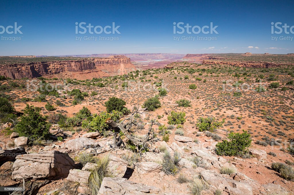 Canyonlands National Park, Utah, USA stock photo
