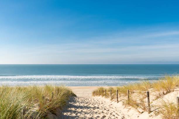 Cap Ferret (Bassin d'Arcachon, France), the Dunes Beach Accès à la plage des Dunes au Cap Ferret atlantic ocean stock pictures, royalty-free photos & images