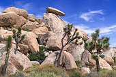 Cap Rock is a well-known formation in the granite boulder fields of Joshua Tree National Park.