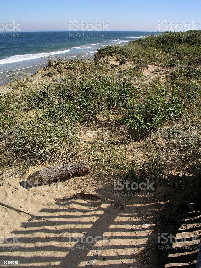 Cape Cod Beach royalty-free stock photo