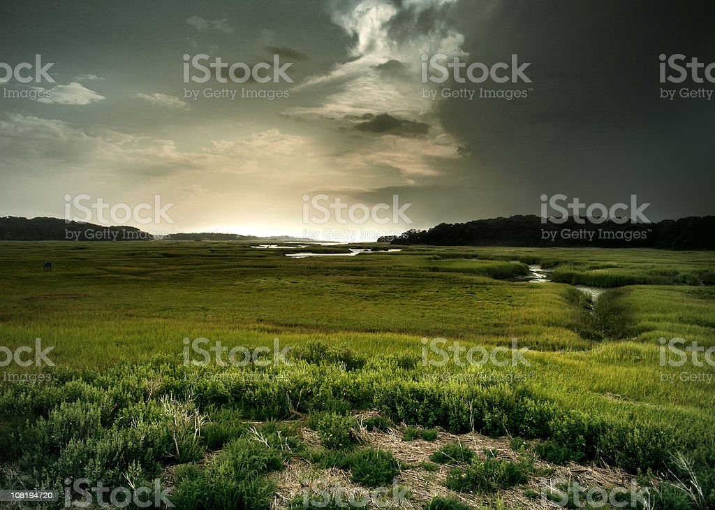 Cape Cod: Green Marsh and Stream at Sunset royalty-free stock photo