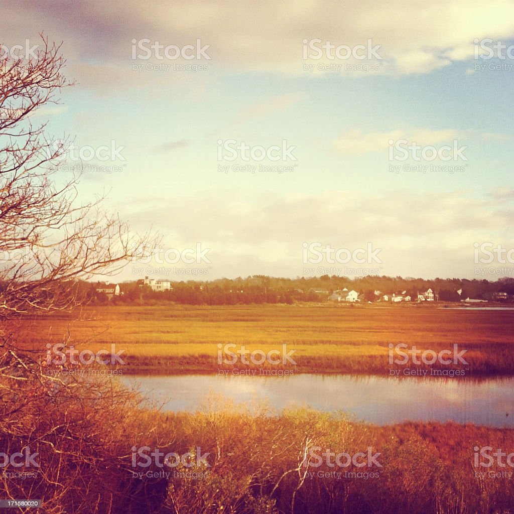 Cape Cod Landscape royalty-free stock photo