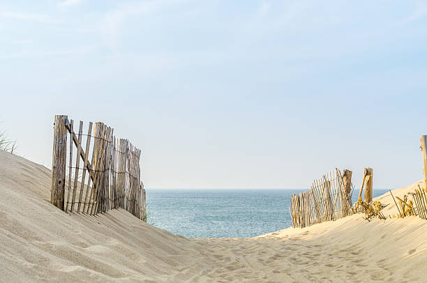cape cod two fences - sand dune stock photos and pictures