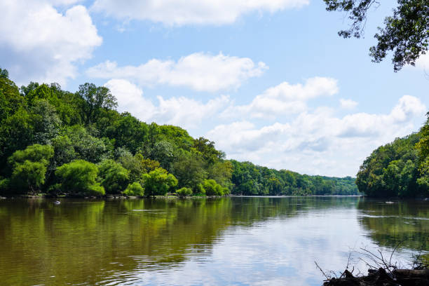 cape fear river - margem do rio - fotografias e filmes do acervo
