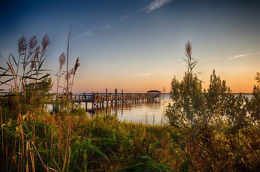 Cape Fear River Stock Photo - Download Image Now