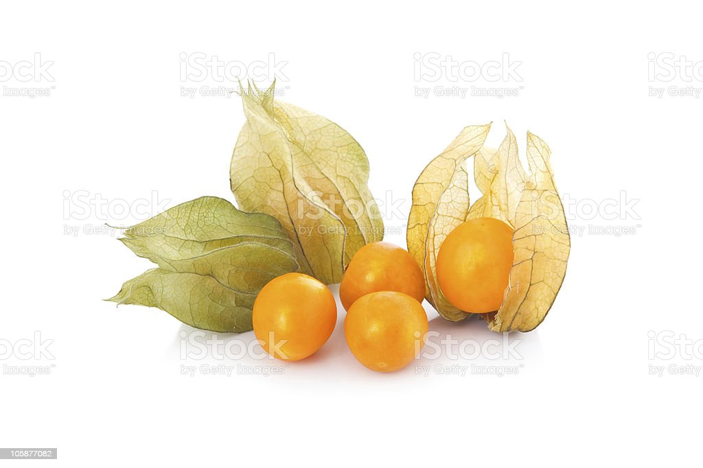 Cape gooseberries with their pods stock photo