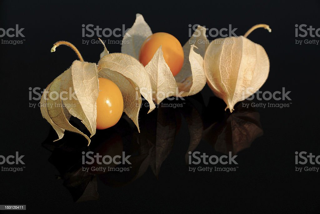 Cape Gooseberry (Physalis) on black with reflection royalty-free stock photo