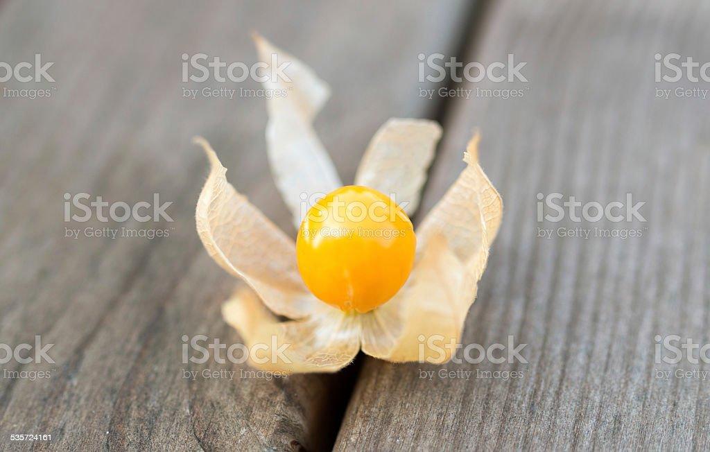 Cape gooseberry - Physalis fruits stock photo
