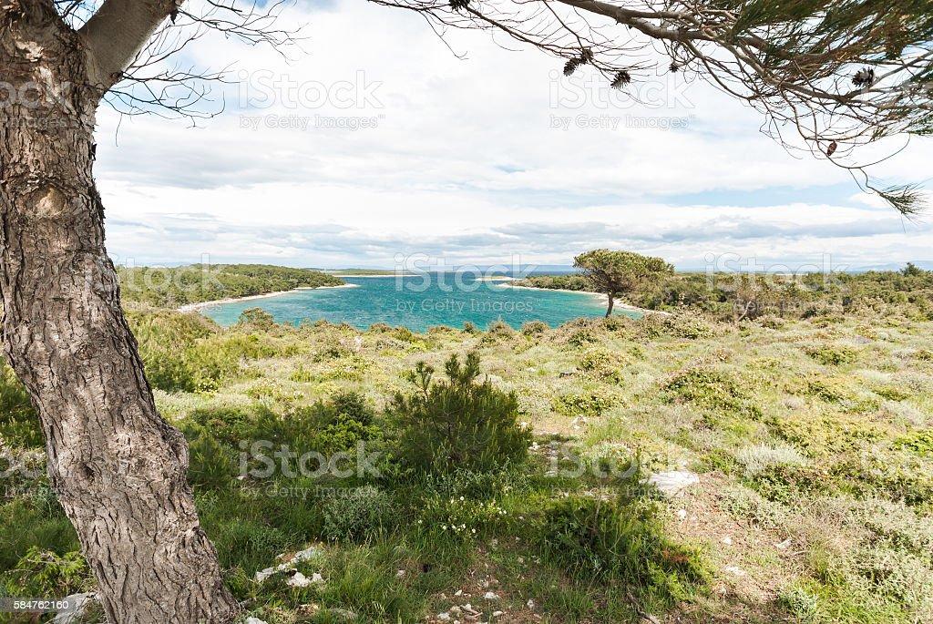 Cape Kamenjak, Istra, Croatia stock photo