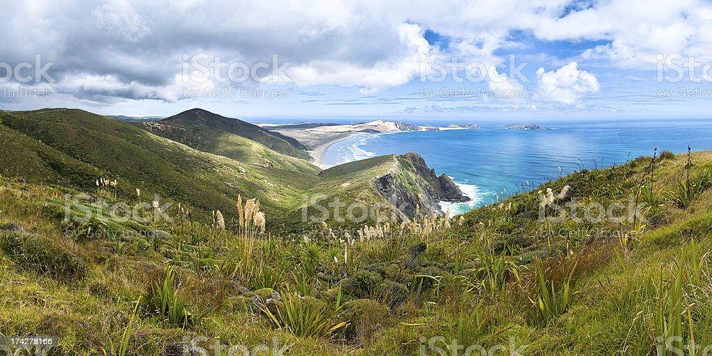 Cape Reinga, Northland, New Zealand stock photo