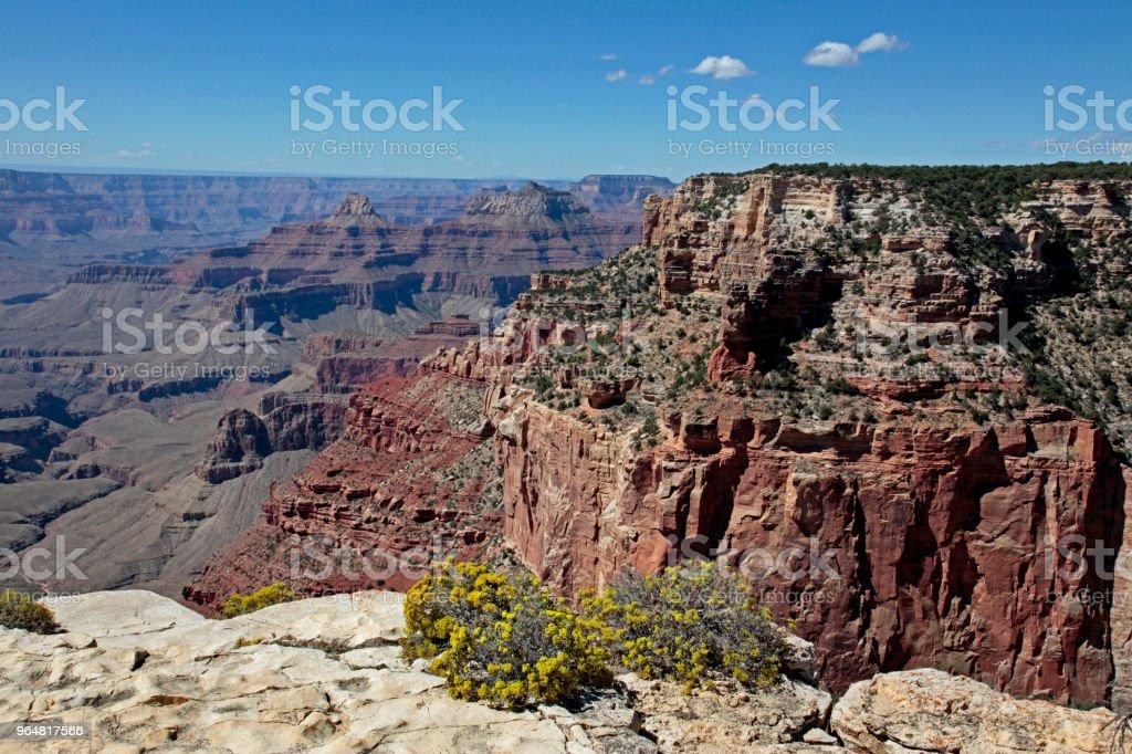 Cape Royal Road, Grand Canyon National Park, Arizona, USA royalty-free stock photo