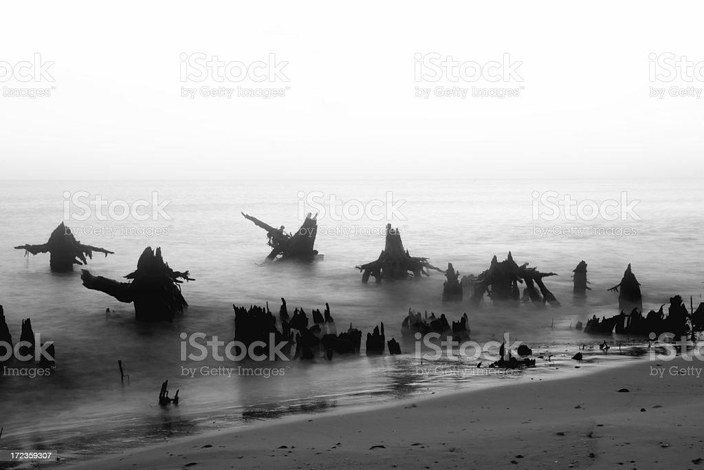 Cabo de San Blas foto de stock libre de derechos