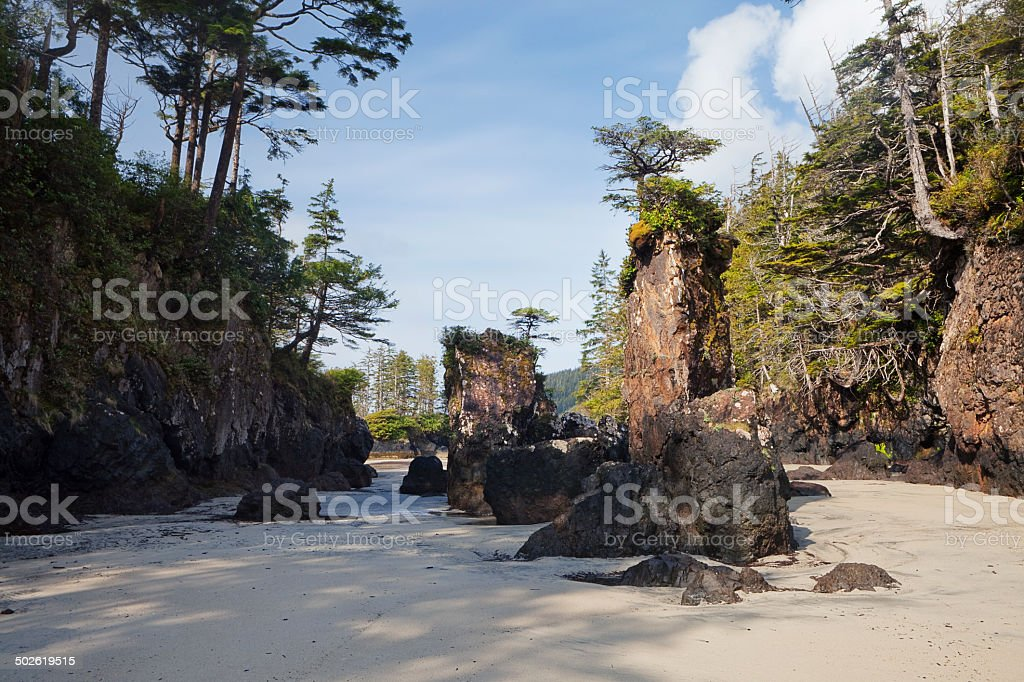 Cape Scott stock photo