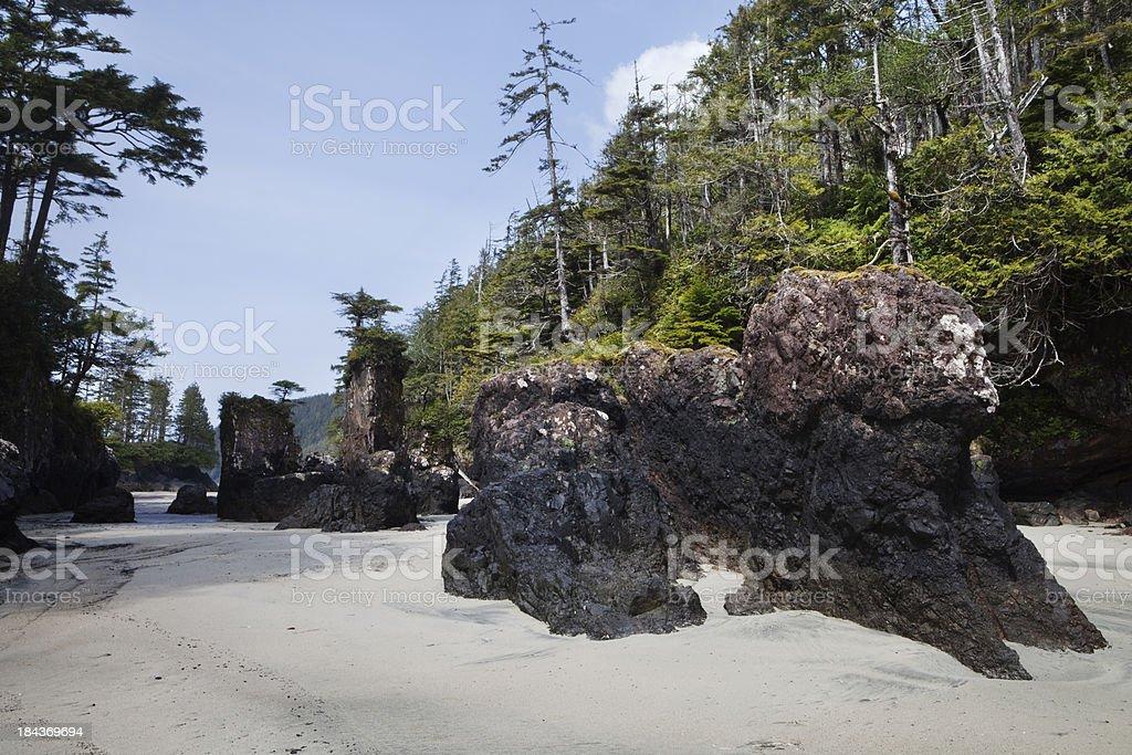 Cape Scott Sea Stacks royalty-free stock photo