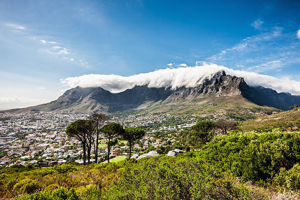 cape town city under table mountains - table mountain south africa stock pictures, royalty-free photos & images