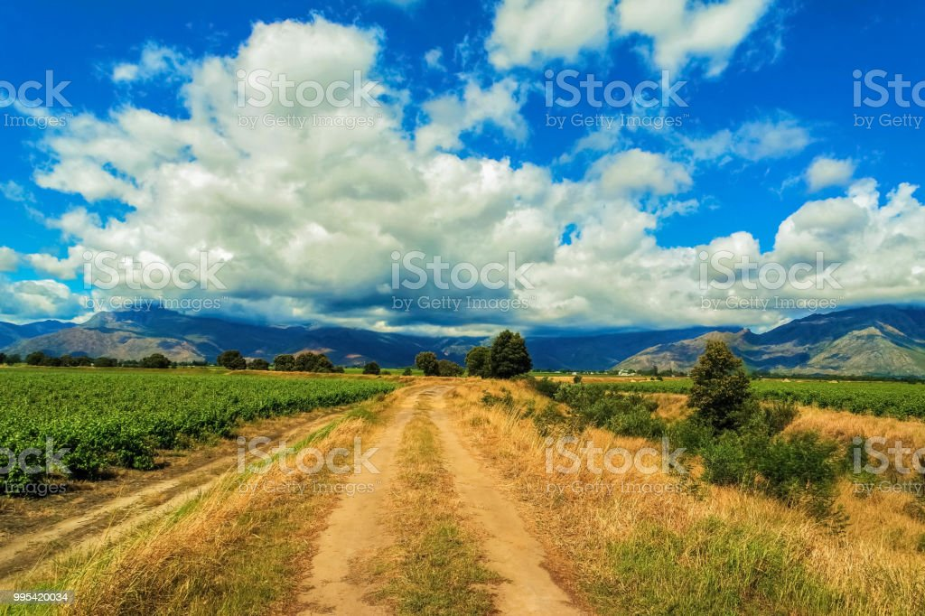 Cape Town, Country Side and Vineyards stock photo