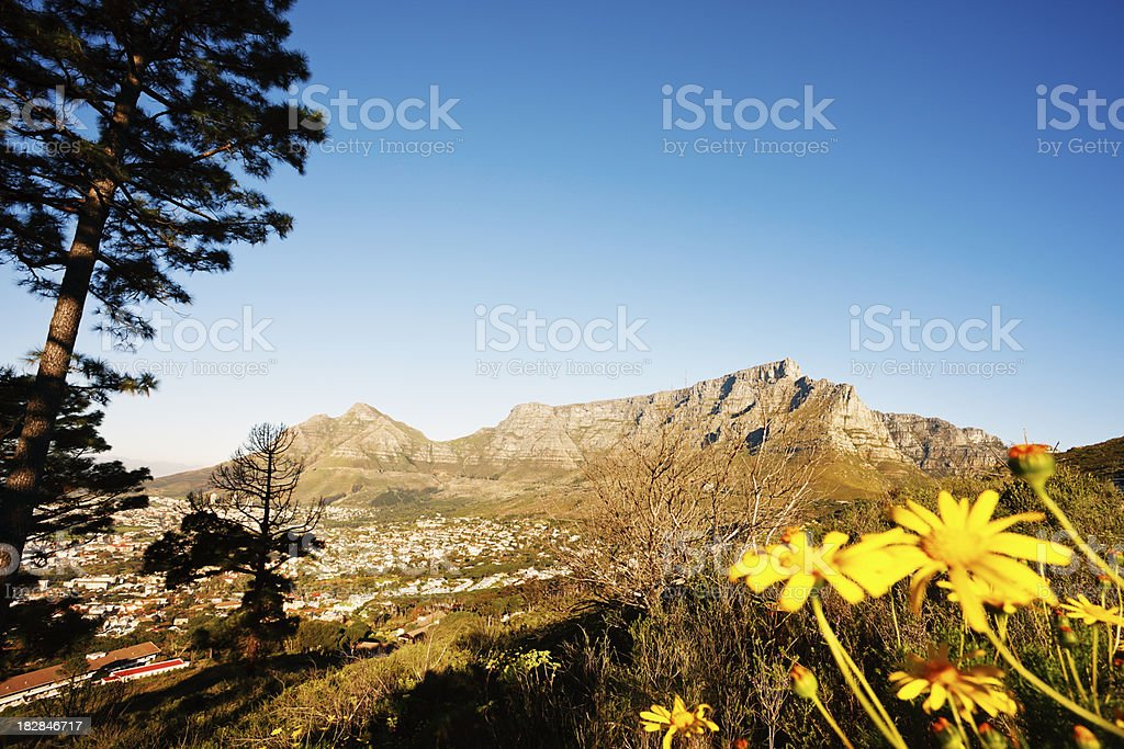Cape Town's landmark Table Mountain and Devils Peak royalty-free stock photo