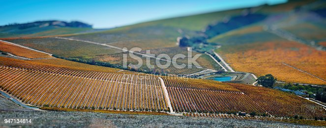 Panoramic image over the Cape Winelands towards Stellenbosch in autumn South Africa