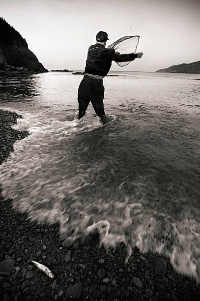 Capelin Fishing stock photo