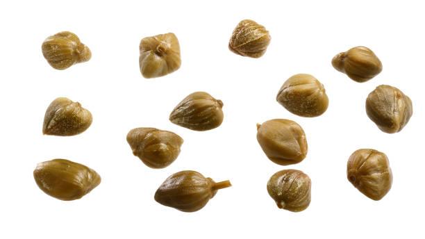kapern-knospen capparis spinosa, pfad - kaper stock-fotos und bilder