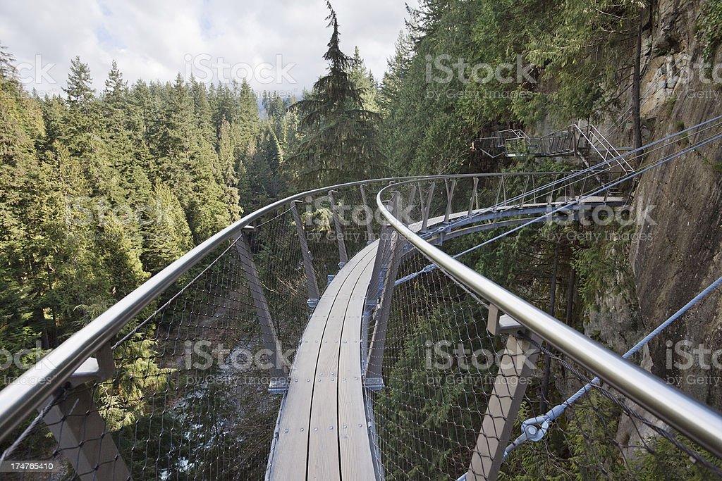 Capilano Suspension Bridge Park stock photo