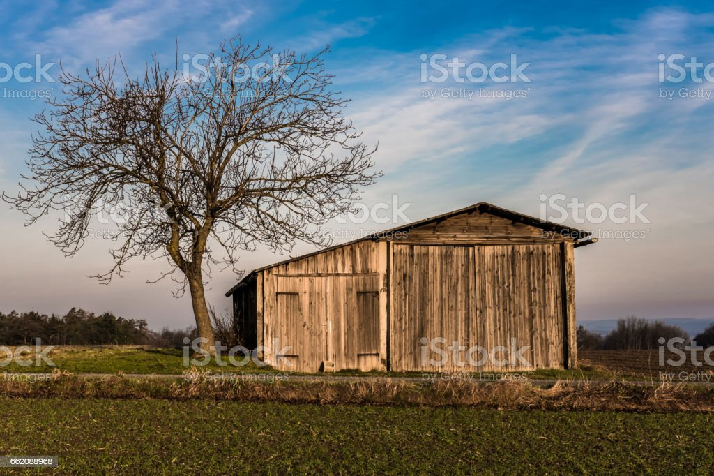 capin with a single tree royalty-free stock photo