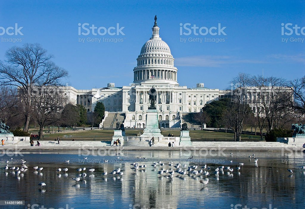 Capital Building royalty-free stock photo