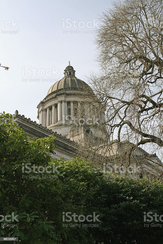 Capital Building thru trees royalty-free stock photo