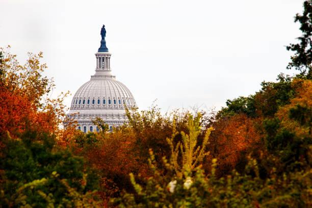 Capitol 2 stock photo