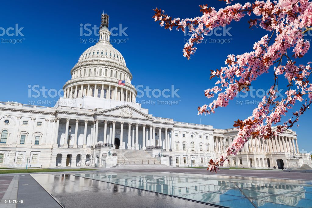 US Capitol at spring sunny day – Foto