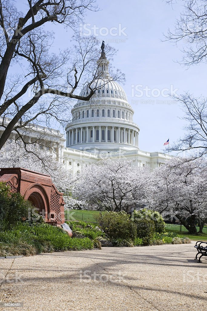 US Capitol Building in Spring royalty-free stock photo