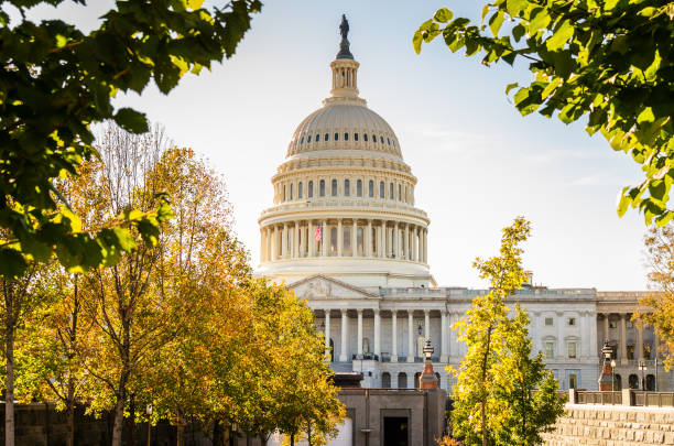 Capitol Building in Washington DC on a Sunny Fall Day View of the Capitol Building in Washington DC Warmly Lit by an Afternoon Autumnal Sun. Some Colourful Trees are in Foreground. capitol building washington dc stock pictures, royalty-free photos & images