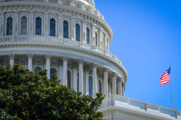 Capitol building in Washington DC with USA flag Capitol building in Washington DC, and flag of USA in front. Horizontal photography during bright shinny day, with blue sky in the background foreign affairs stock pictures, royalty-free photos & images