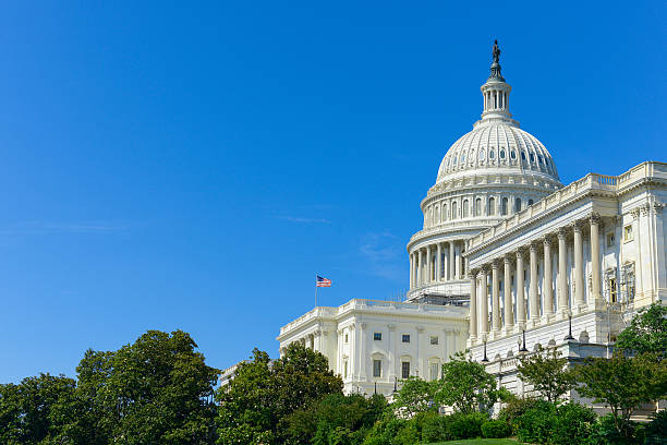 """Capitol Building """"Capitol Building in Washington DC, USASee also:"""" state capitol building stock pictures, royalty-free photos & images"""