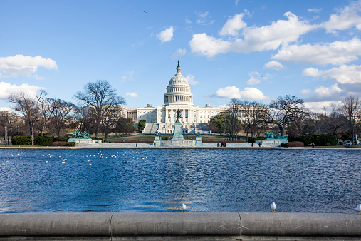 Us Capitol Building Stock Photo - Download Image Now
