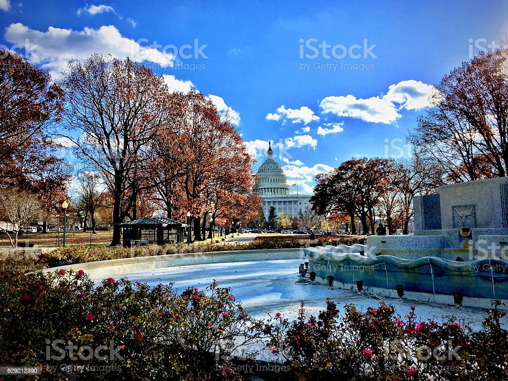 Capitol Hill dome in the fall stock photo