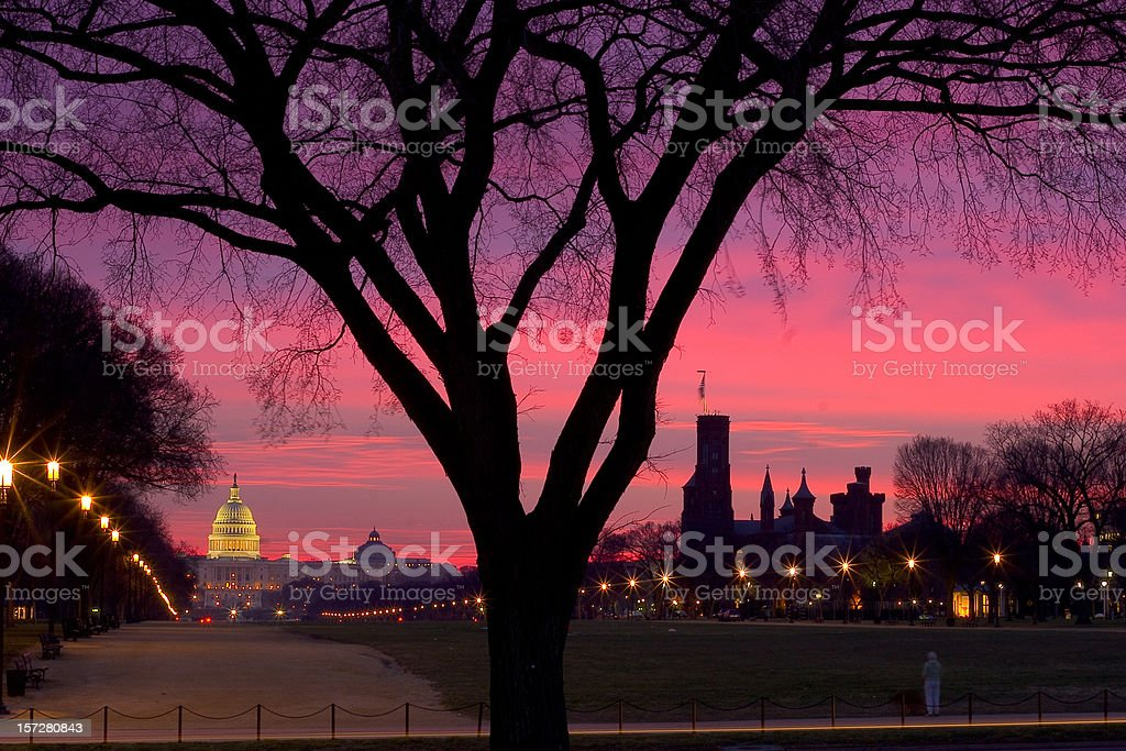 Capitol Hill in morning red royalty-free stock photo