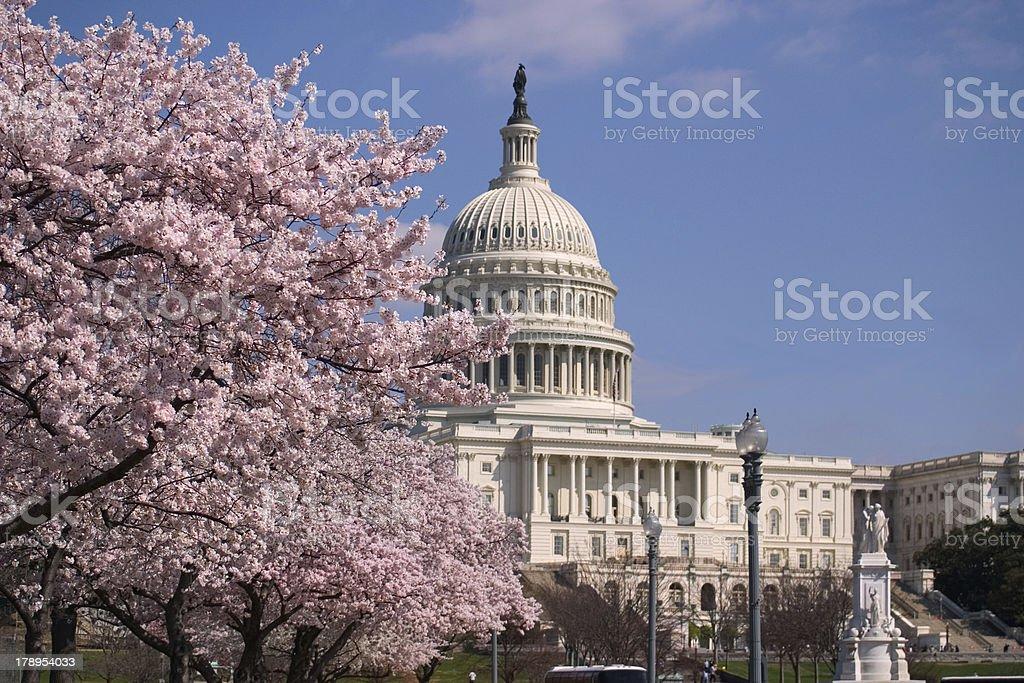Capitol Hill stock photo