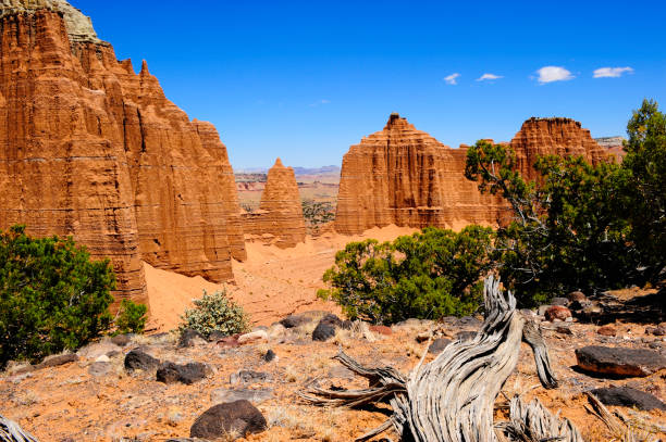 Capitol Reef National Park Red rocks at Cathedral Wash, Capitol Reef National Park, Utah entrada sandstone stock pictures, royalty-free photos & images