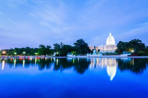 istock US Capitol Skyline 187290510
