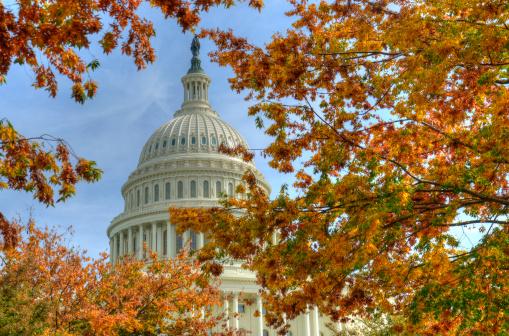 Capitol Washington DC in autumn