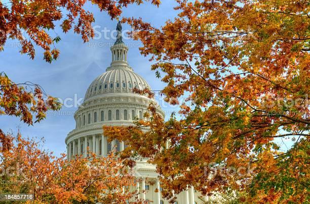 Capitol washington dc in autumn picture id184857716?b=1&k=6&m=184857716&s=612x612&h=x4i1wlxgczxeehbu5jtf47o xoxuswqlrh88selghhi=