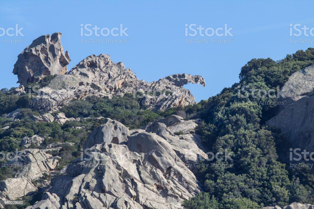 Capo D'orso, Palau, Sardinia, Italy 免版稅 stock photo