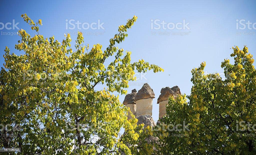 Cappadocia ballon royalty-free stock photo