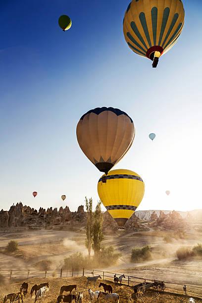 cappadocia the land of beautiful horses - aardpiramide stockfoto's en -beelden