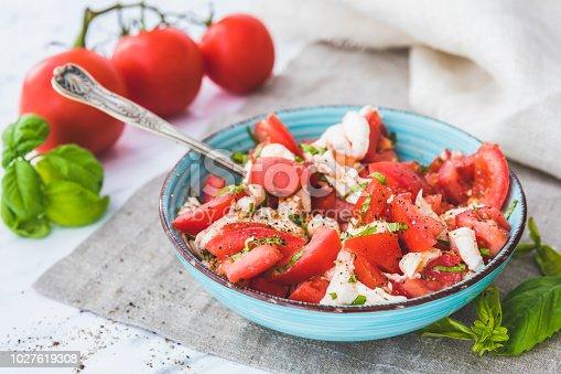 istock Caprese salad. Mozzarella, tomatoes and basil 1027619308