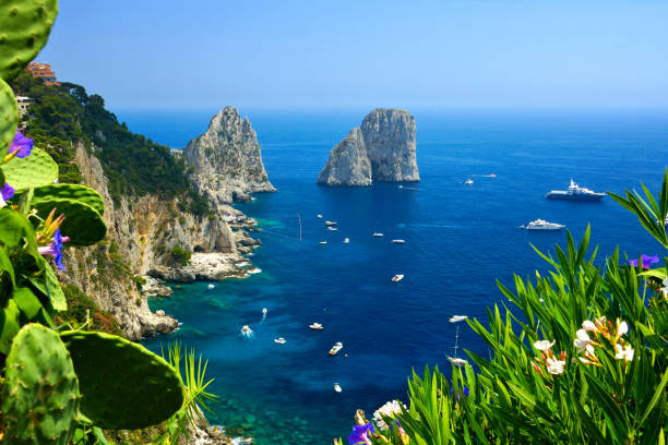 Capri coast with Faraglioni rocks, flowers and boats, Italy stock photo