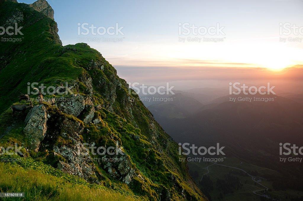 capricorn and sundown royalty-free stock photo