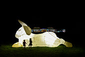 Captivating animations and architectural projections on major buildings in Canberra.